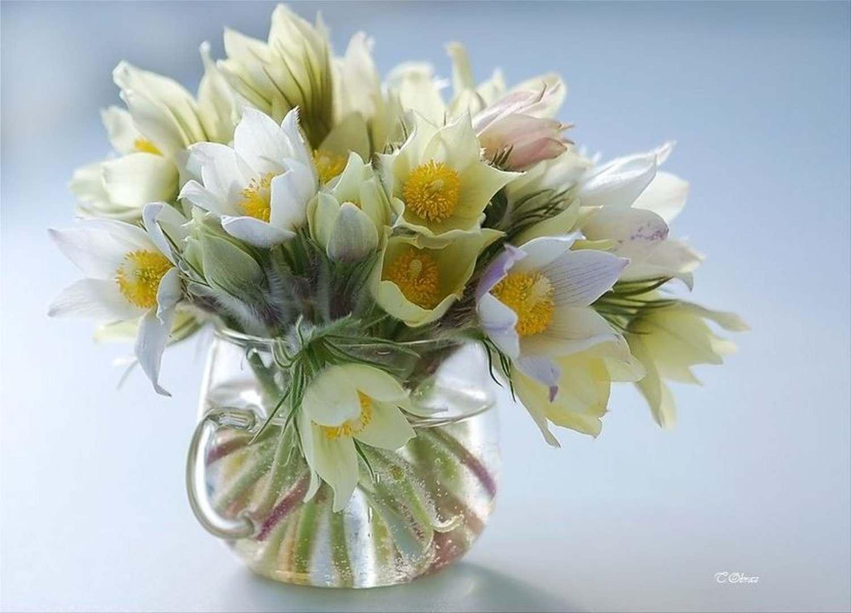 Весенние цветы на день рождения